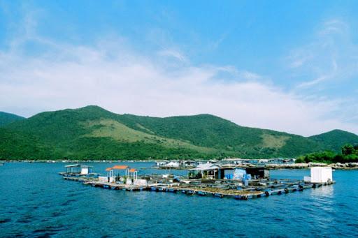 Quản lý nguồn tài nguyên ven biển: Đánh đổi giữa du lịch và khai thác thủy sản