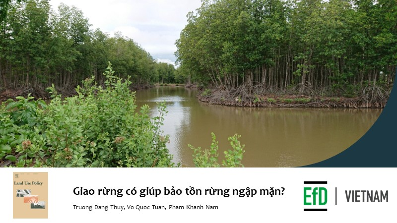 Does the devolution of forest management help conserve mangrove in the Mekong Delta of Viet Nam?